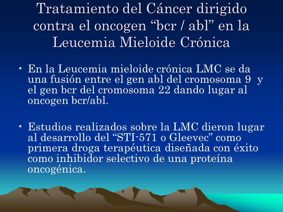 Tratamiento del Cáncer dirigido contra el oncogen bcr / abl en la Leucemia Mieloide Crónica