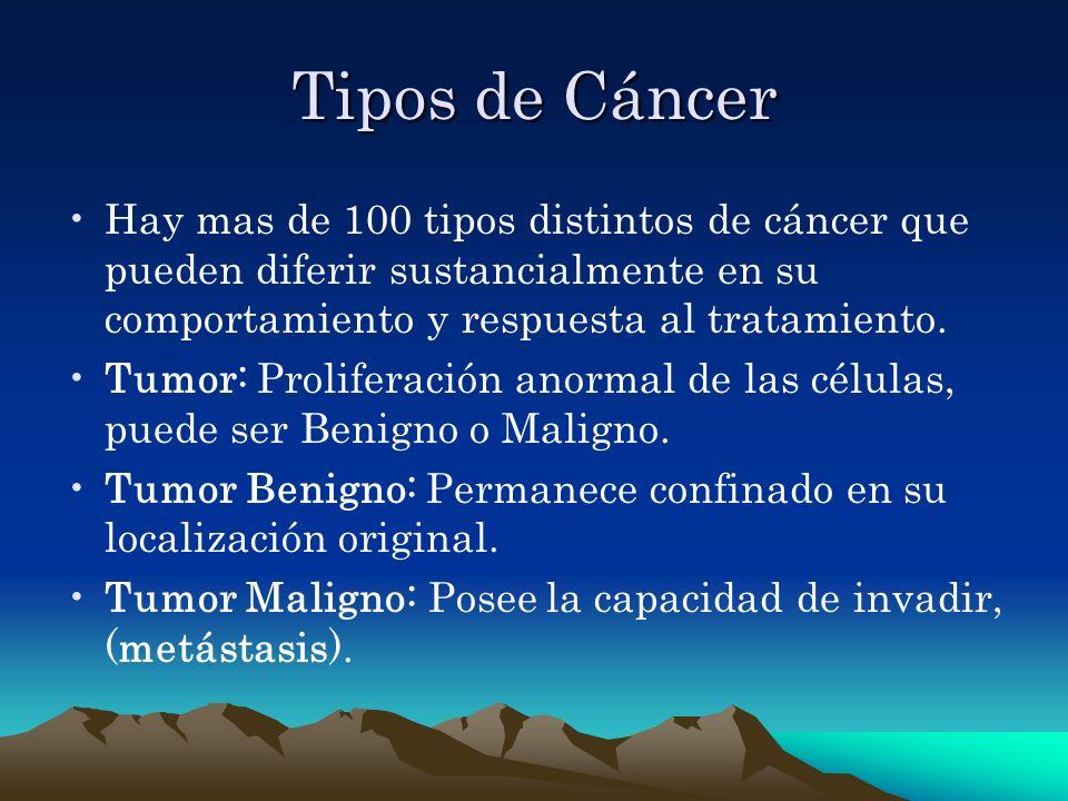 Tipos de Cáncer Hay mas de 100 tipos distintos de cáncer que pueden diferir sustancialmente en su comportamiento y respuesta al tratamiento.