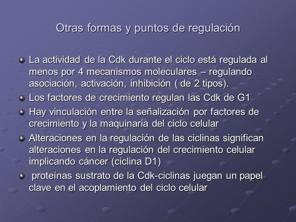 Otras formas y puntos de regulación