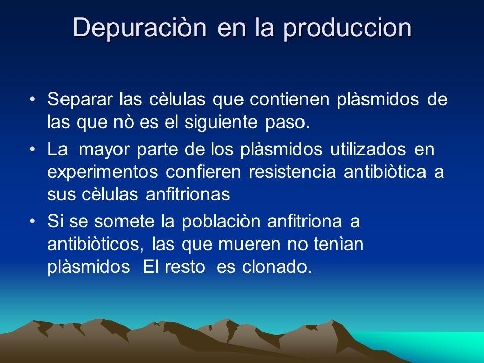 Depuraciòn en la produccion