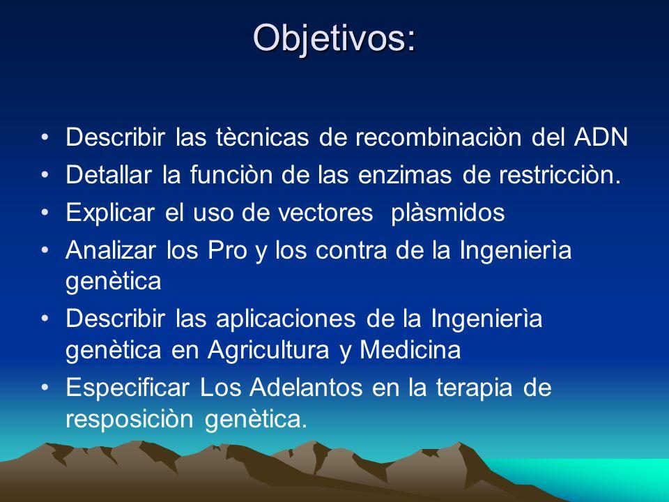 Objetivos: Describir las tècnicas de recombinaciòn del ADN