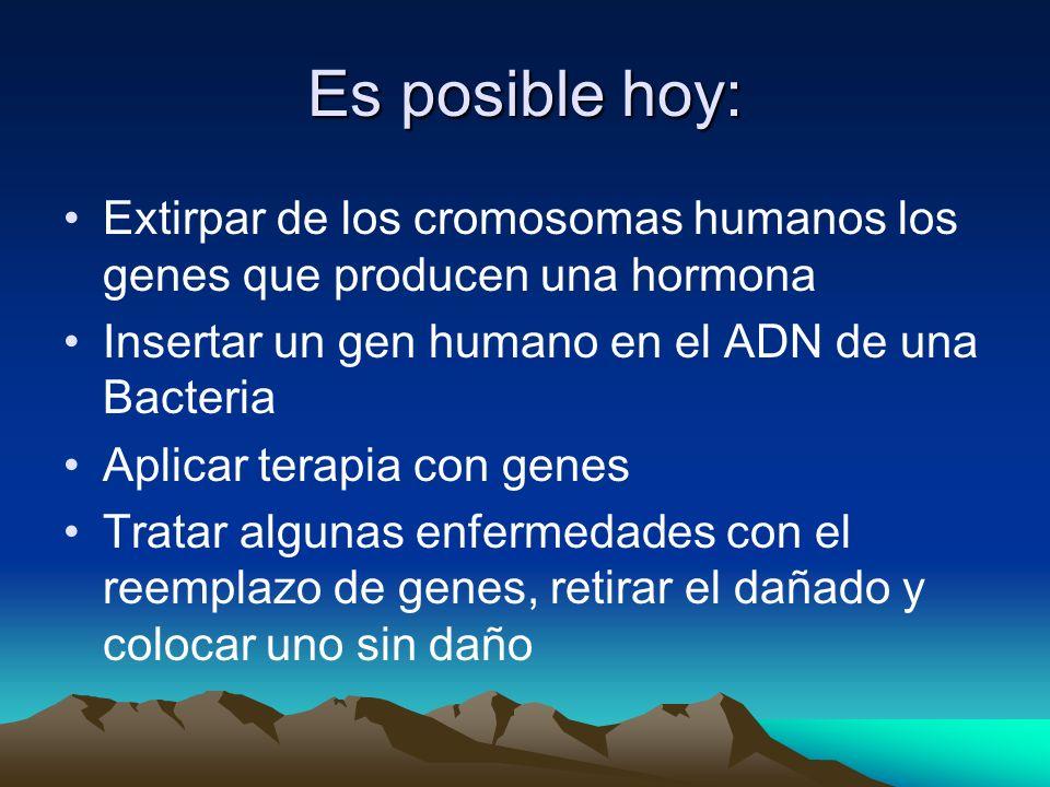 Es posible hoy: Extirpar de los cromosomas humanos los genes que producen una hormona. Insertar un gen humano en el ADN de una Bacteria.