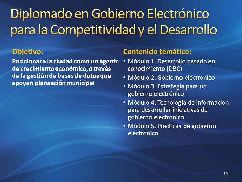 Diplomado en Gobierno Electrónico para la Competitividad y el Desarrollo