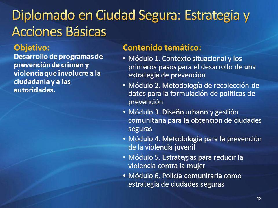 Diplomado en Ciudad Segura: Estrategia y Acciones Básicas