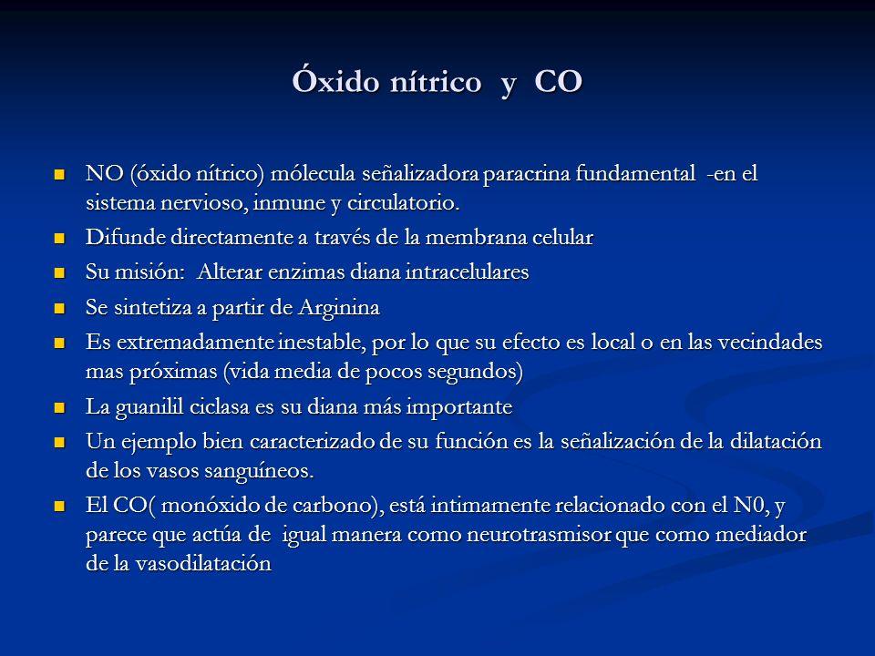 Óxido nítrico y CO NO (óxido nítrico) mólecula señalizadora paracrina fundamental -en el sistema nervioso, inmune y circulatorio.