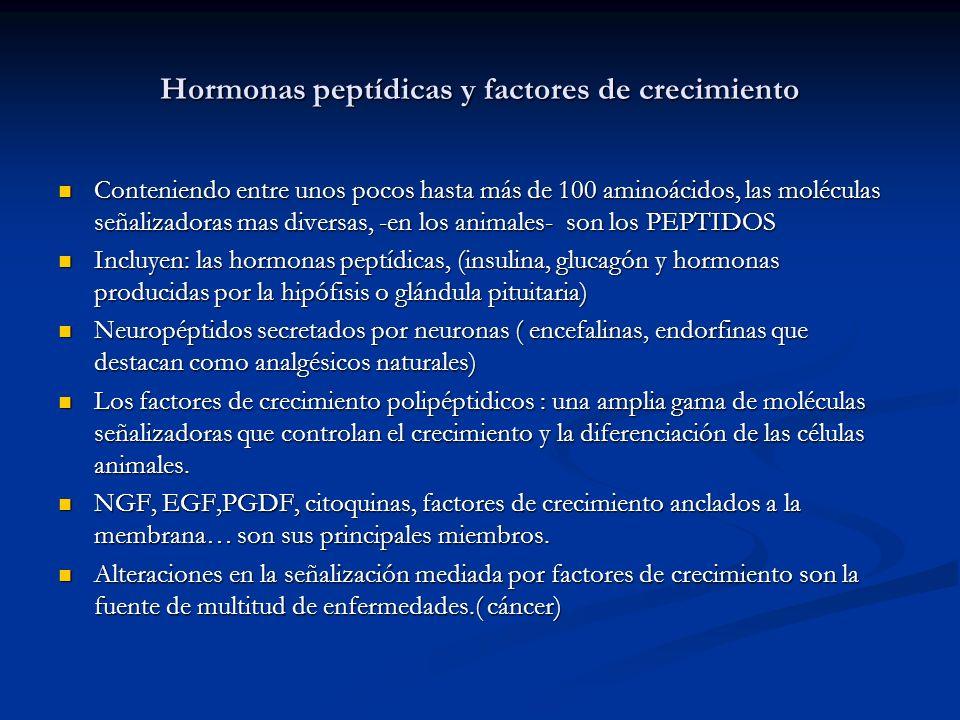 Hormonas peptídicas y factores de crecimiento