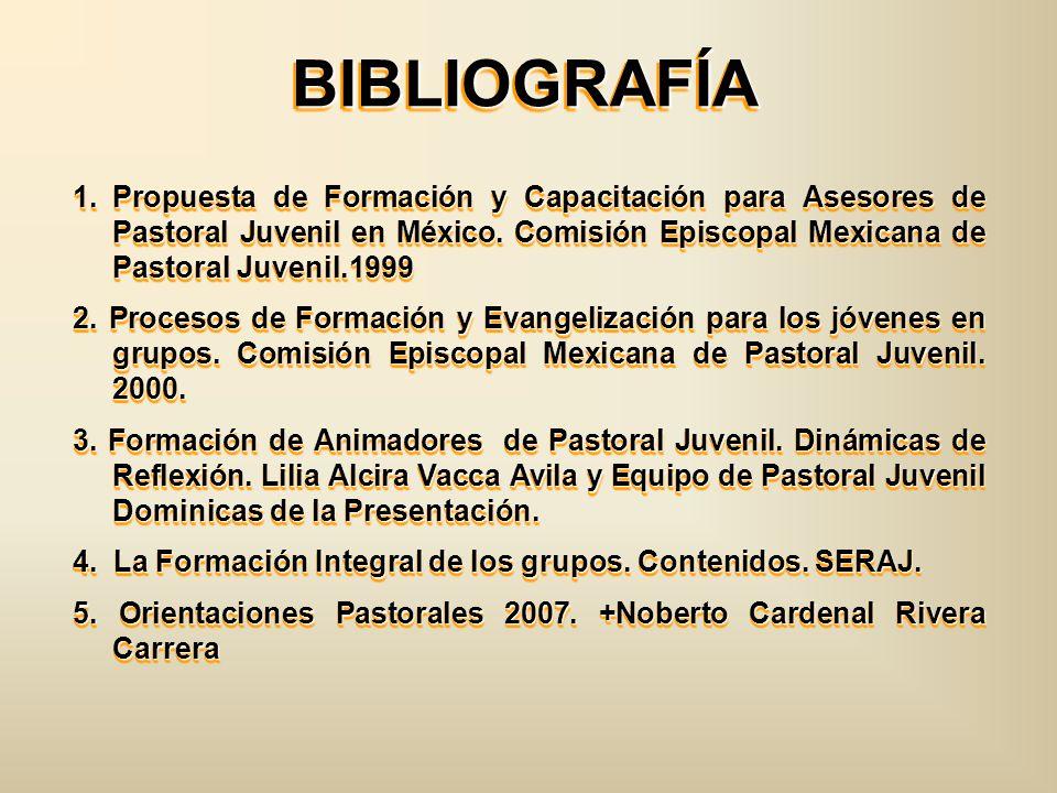 BIBLIOGRAFÍA Propuesta de Formación y Capacitación para Asesores de Pastoral Juvenil en México. Comisión Episcopal Mexicana de Pastoral Juvenil.1999.