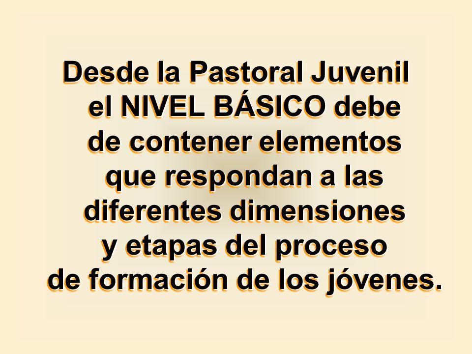 Desde la Pastoral Juvenil el NIVEL BÁSICO debe de contener elementos que respondan a las diferentes dimensiones y etapas del proceso de formación de los jóvenes.