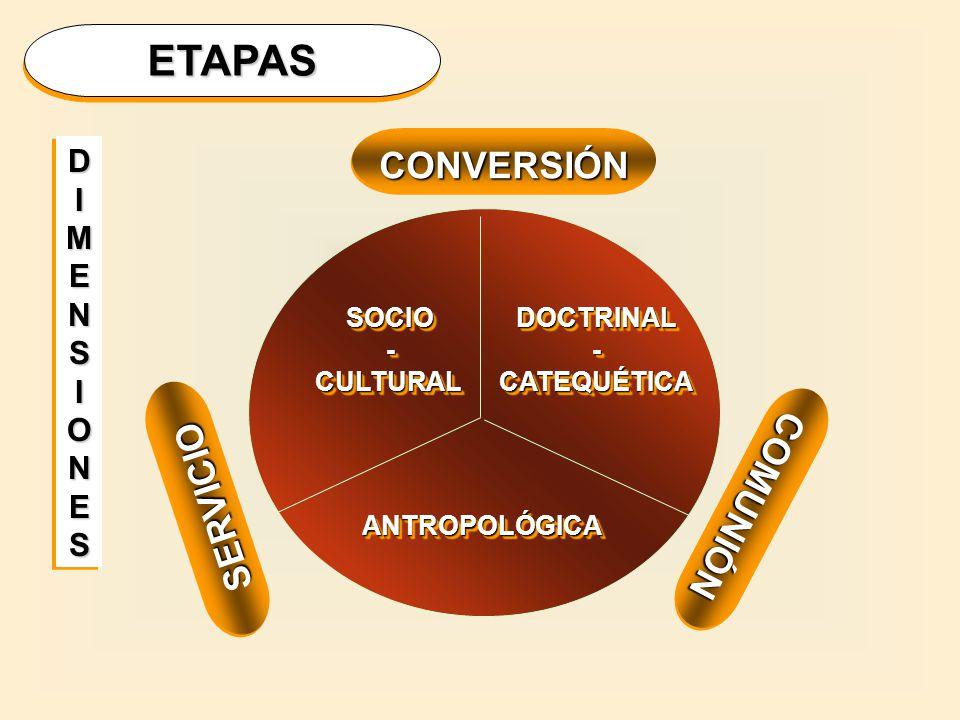 ETAPAS CONVERSIÓN COMUNIÓN SERVICIO D I M E N S O SOCIO - CULTURAL