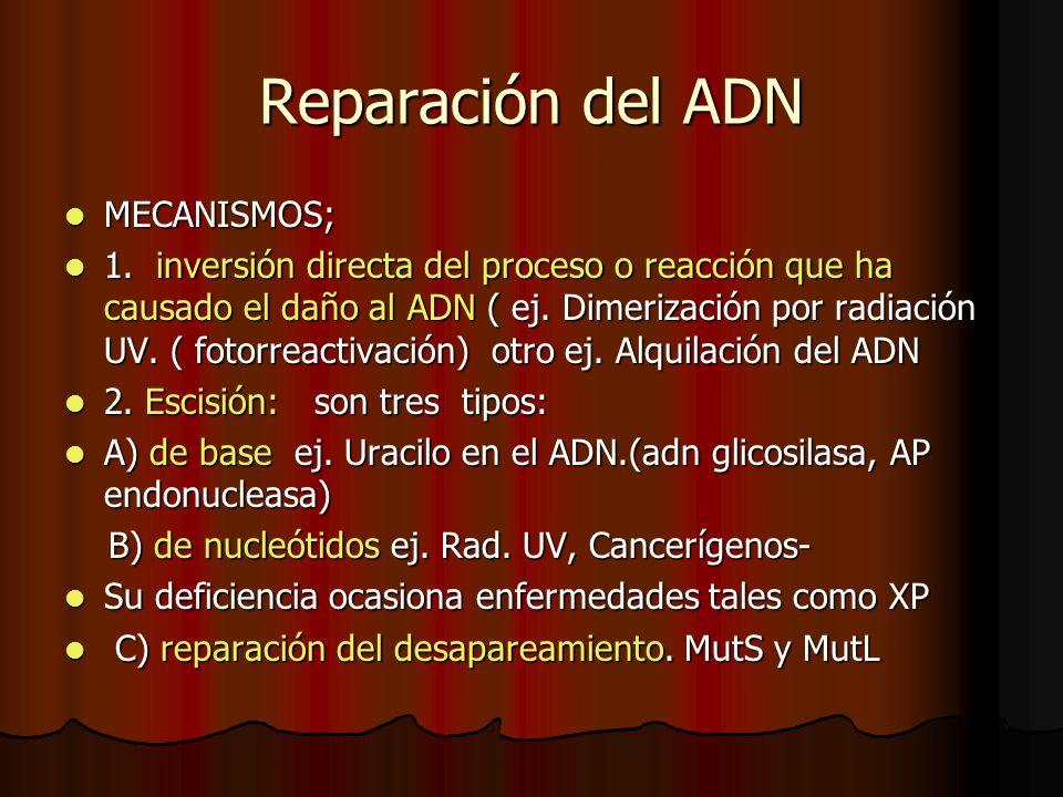 Reparación del ADN MECANISMOS;