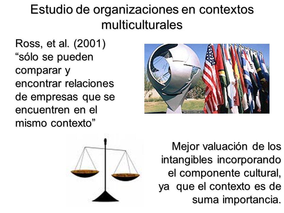 Estudio de organizaciones en contextos multiculturales