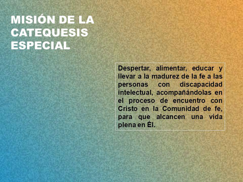 MISIÓN DE LA CATEQUESIS ESPECIAL