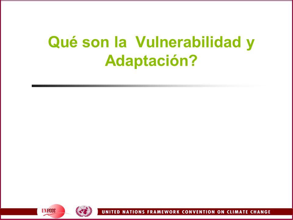 Qué son la Vulnerabilidad y Adaptación