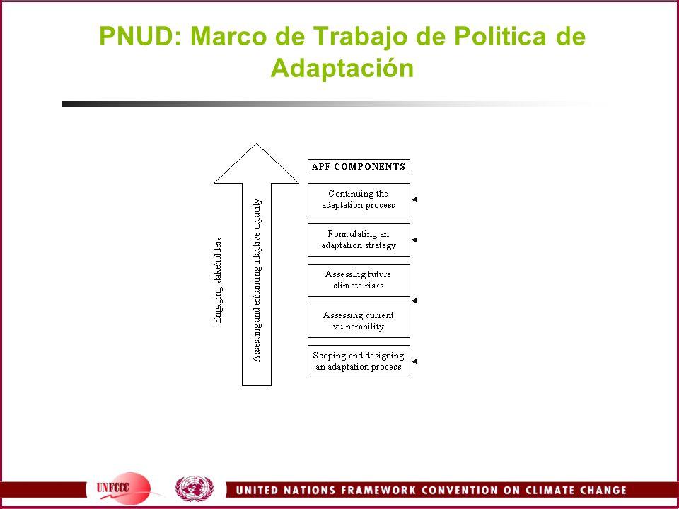 PNUD: Marco de Trabajo de Politica de Adaptación