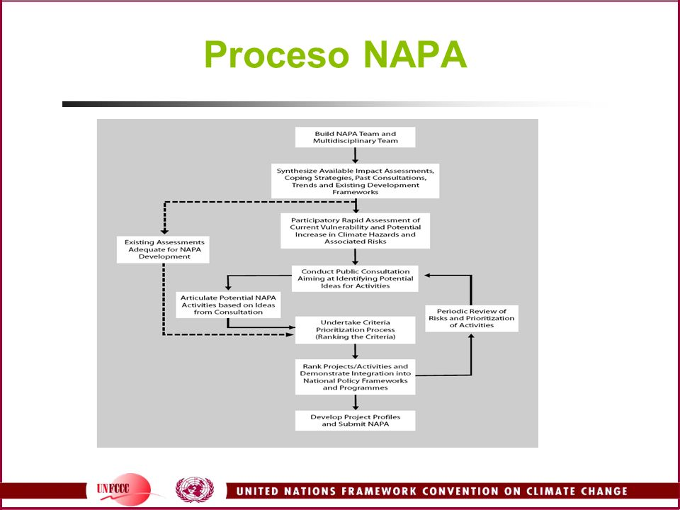 Proceso NAPA