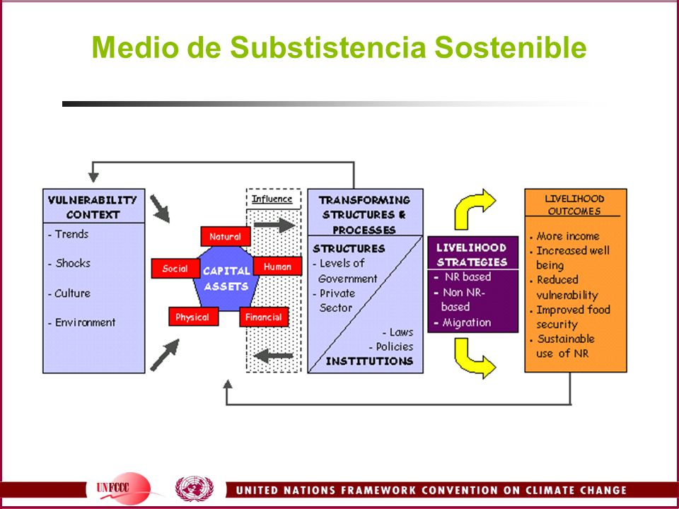 Medio de Substistencia Sostenible