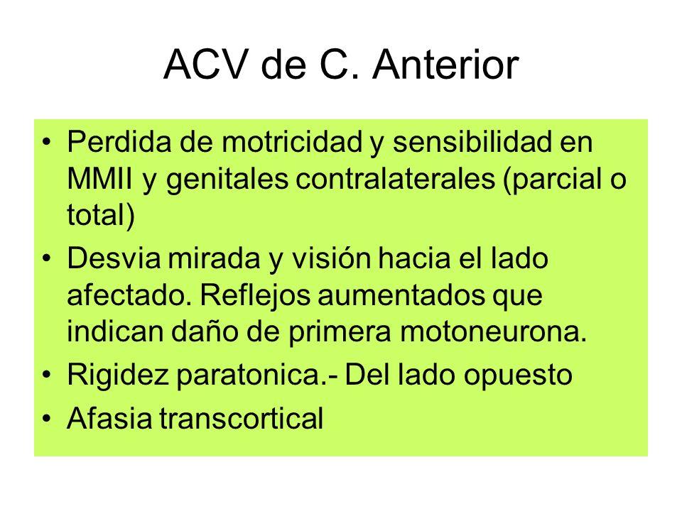 ACV de C. Anterior Perdida de motricidad y sensibilidad en MMII y genitales contralaterales (parcial o total)