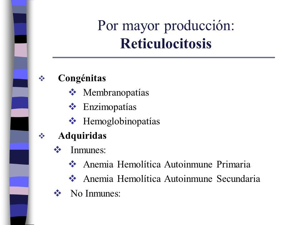 Por mayor producción: Reticulocitosis