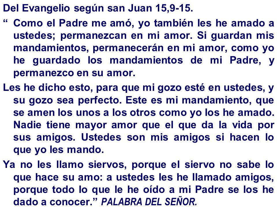 Del Evangelio según san Juan 15,9-15.
