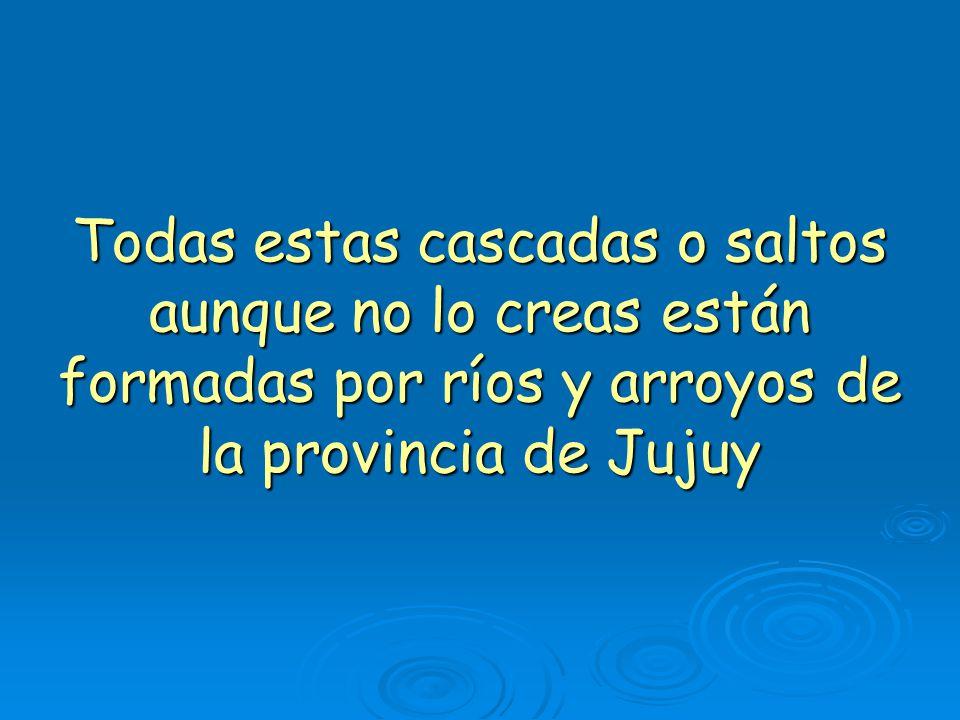 Todas estas cascadas o saltos aunque no lo creas están formadas por ríos y arroyos de la provincia de Jujuy
