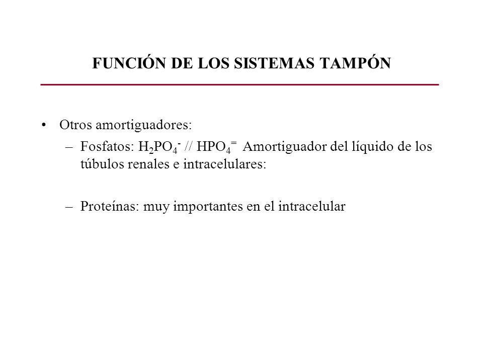FUNCIÓN DE LOS SISTEMAS TAMPÓN