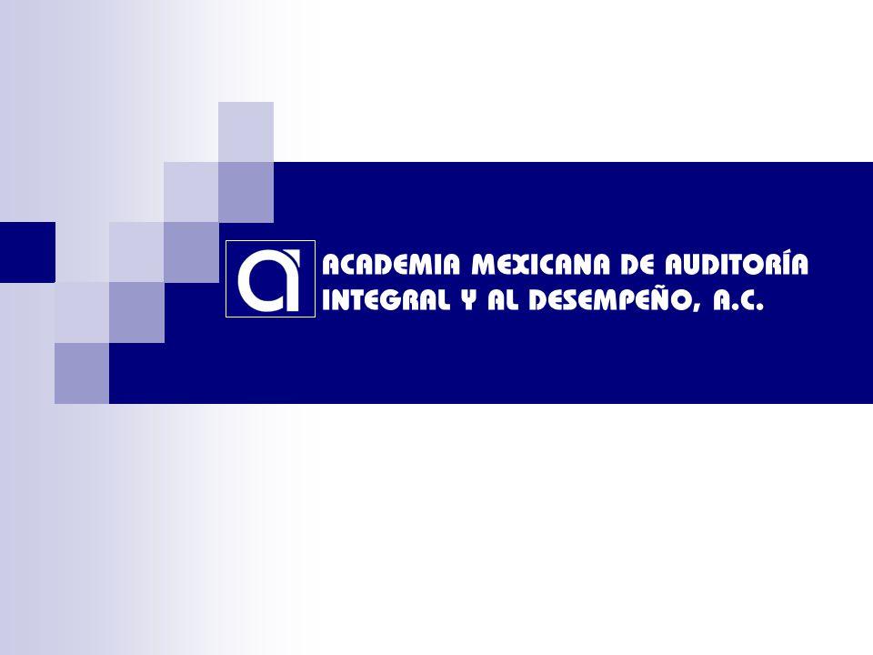 ACADEMIA MEXICANA DE AUDITORÍA