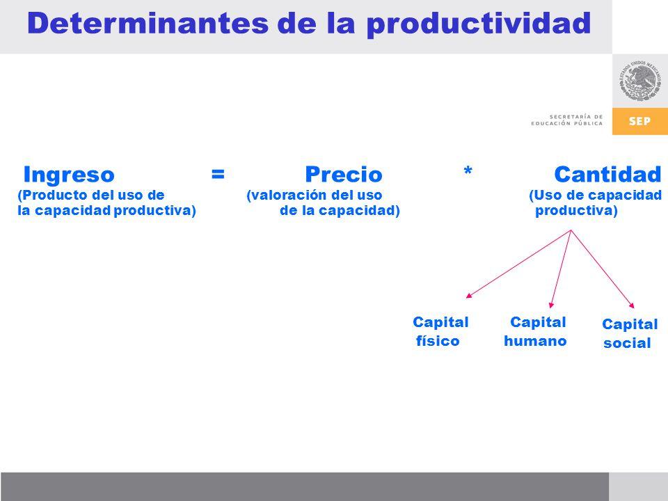 Determinantes de la productividad
