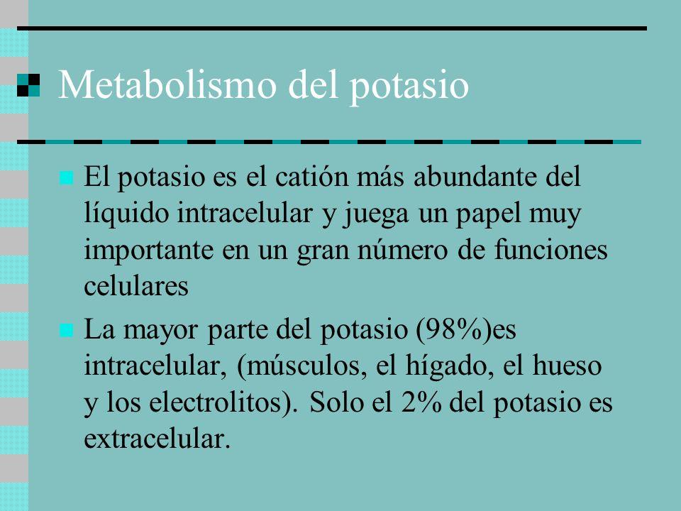 Metabolismo del potasio