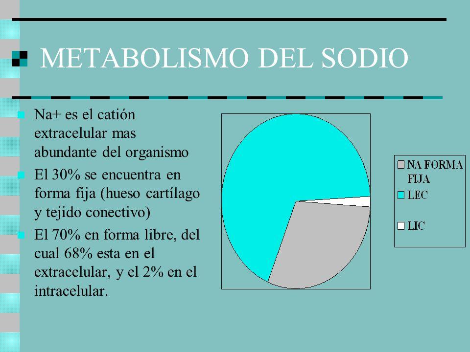 METABOLISMO DEL SODIO Na+ es el catión extracelular mas abundante del organismo.