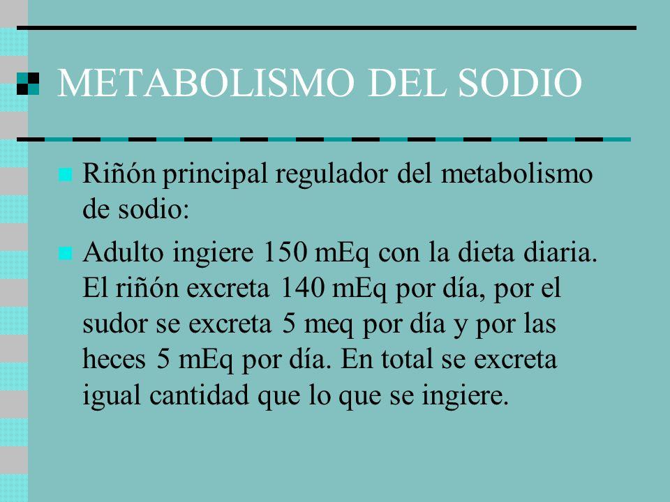 METABOLISMO DEL SODIO Riñón principal regulador del metabolismo de sodio: