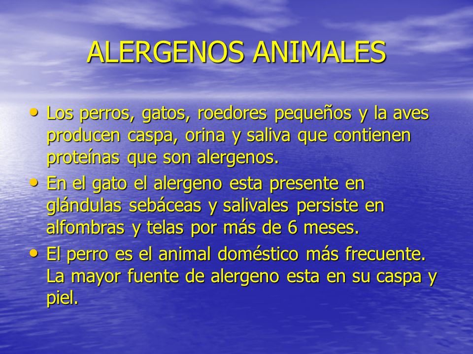 ALERGENOS ANIMALES Los perros, gatos, roedores pequeños y la aves producen caspa, orina y saliva que contienen proteínas que son alergenos.