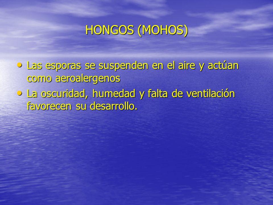 HONGOS (MOHOS) Las esporas se suspenden en el aire y actúan como aeroalergenos.