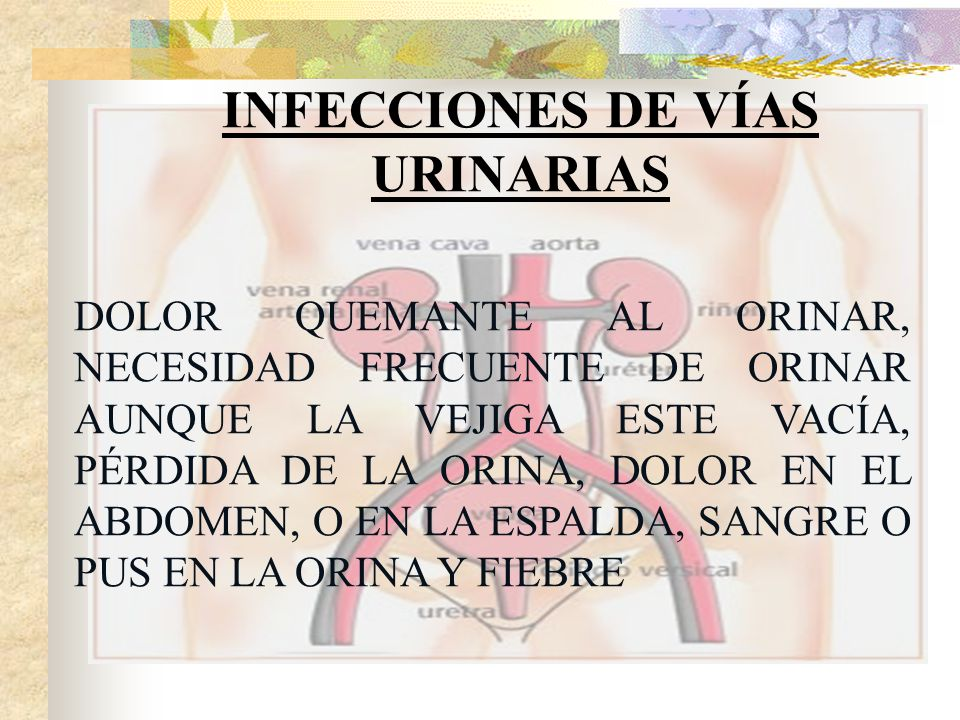 INFECCIONES DE VÍAS URINARIAS