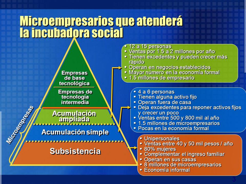 Microempresarios que atenderá la incubadora social