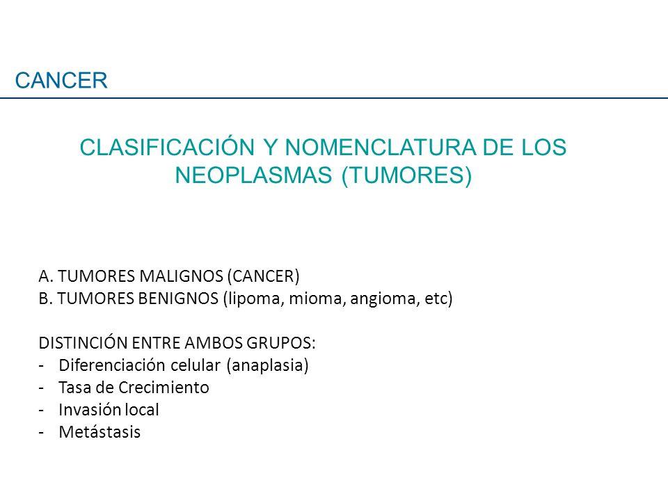 CLASIFICACIÓN Y NOMENCLATURA DE LOS NEOPLASMAS (TUMORES)