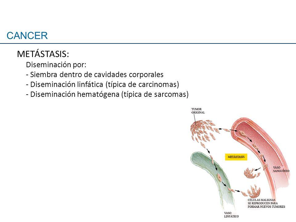CANCER METÁSTASIS: Diseminación por: