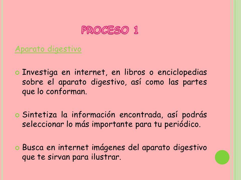 PROCESO 1 Aparato digestivo