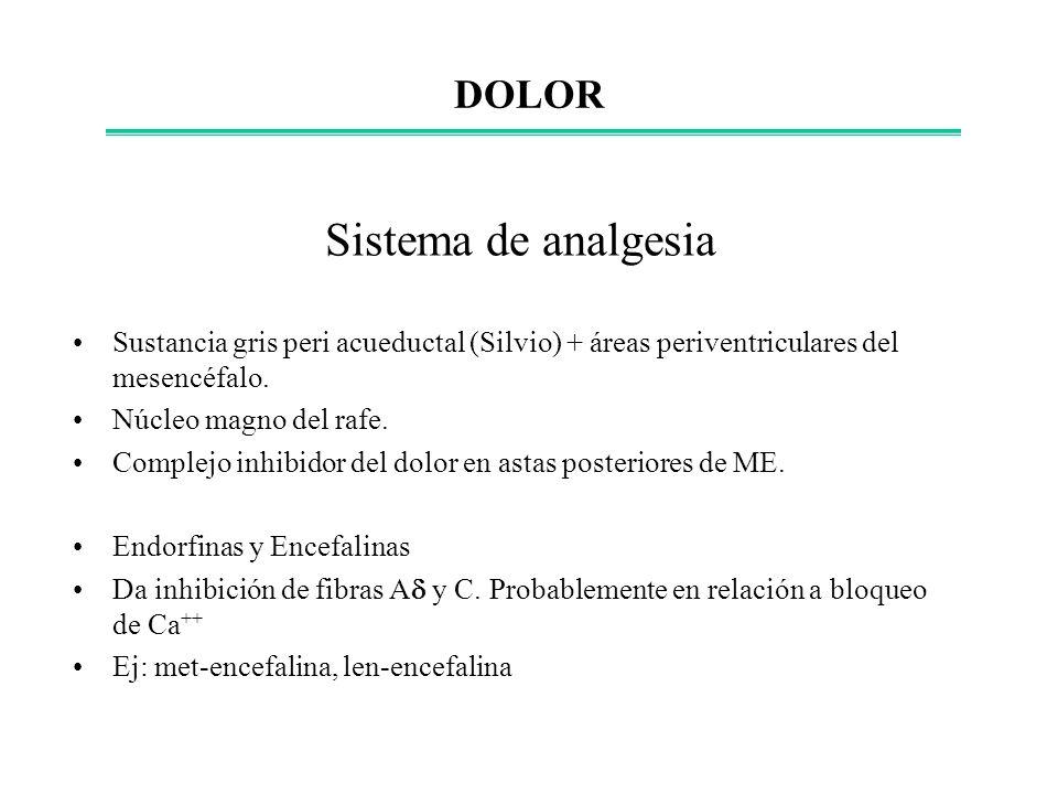 Sistema de analgesia DOLOR