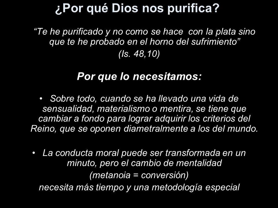 ¿Por qué Dios nos purifica