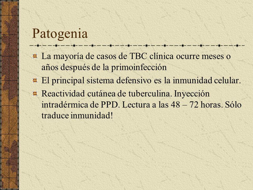Patogenia La mayoría de casos de TBC clínica ocurre meses o años después de la primoinfección.