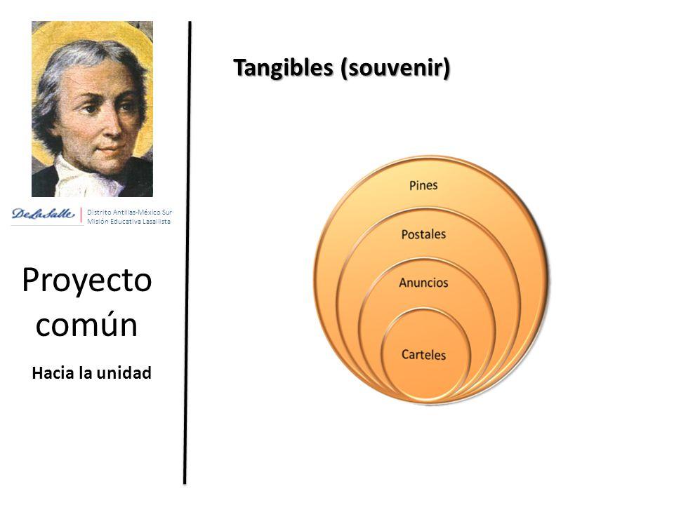 Proyecto común Tangibles (souvenir) Hacia la unidad