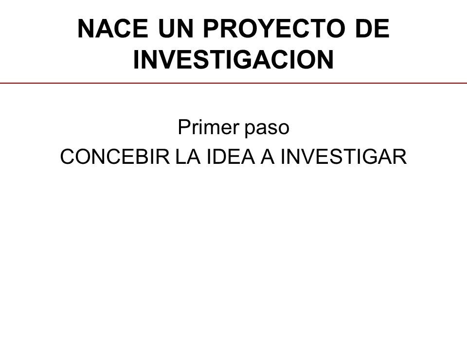 NACE UN PROYECTO DE INVESTIGACION