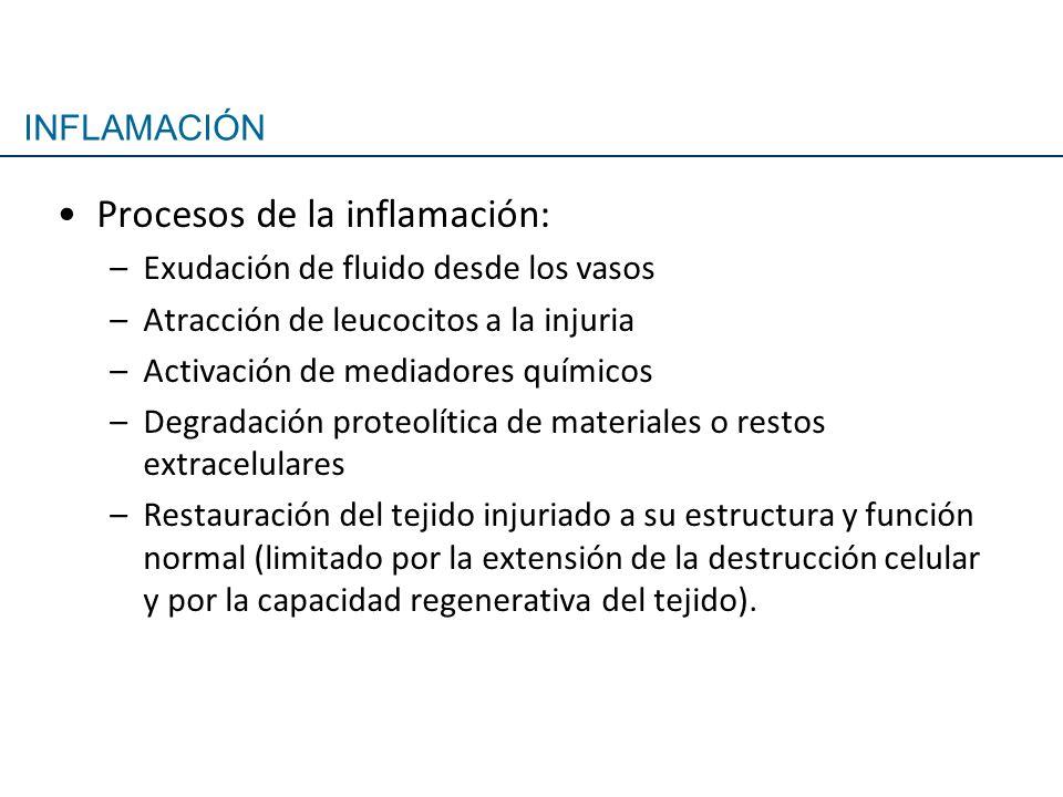 Procesos de la inflamación: