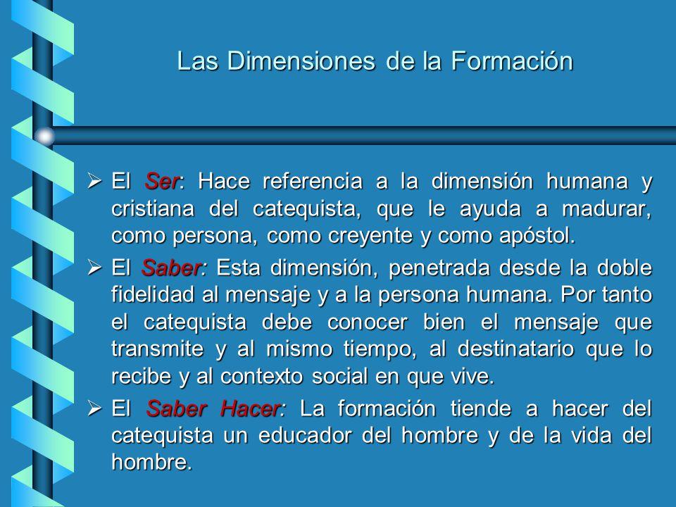 Las Dimensiones de la Formación