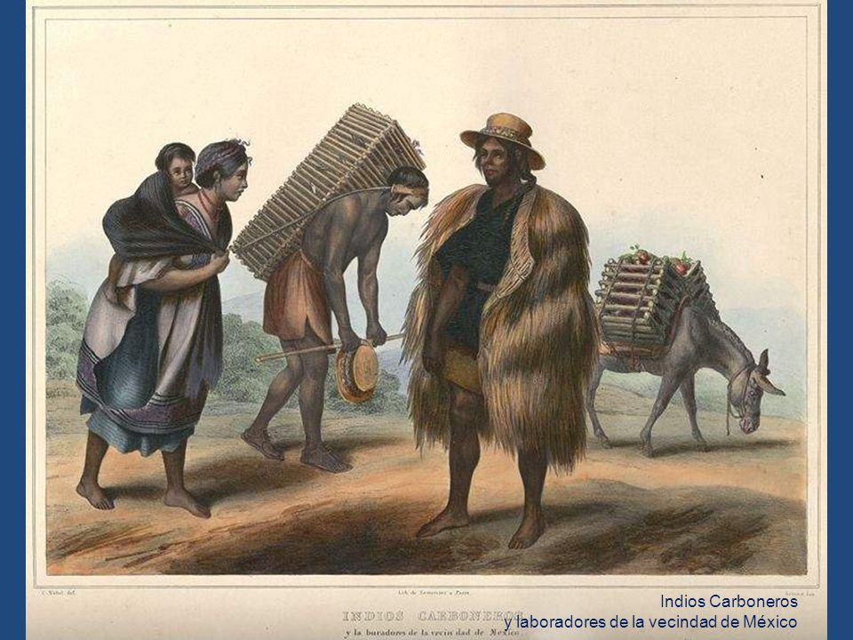 Indios Carboneros y laboradores de la vecindad de México