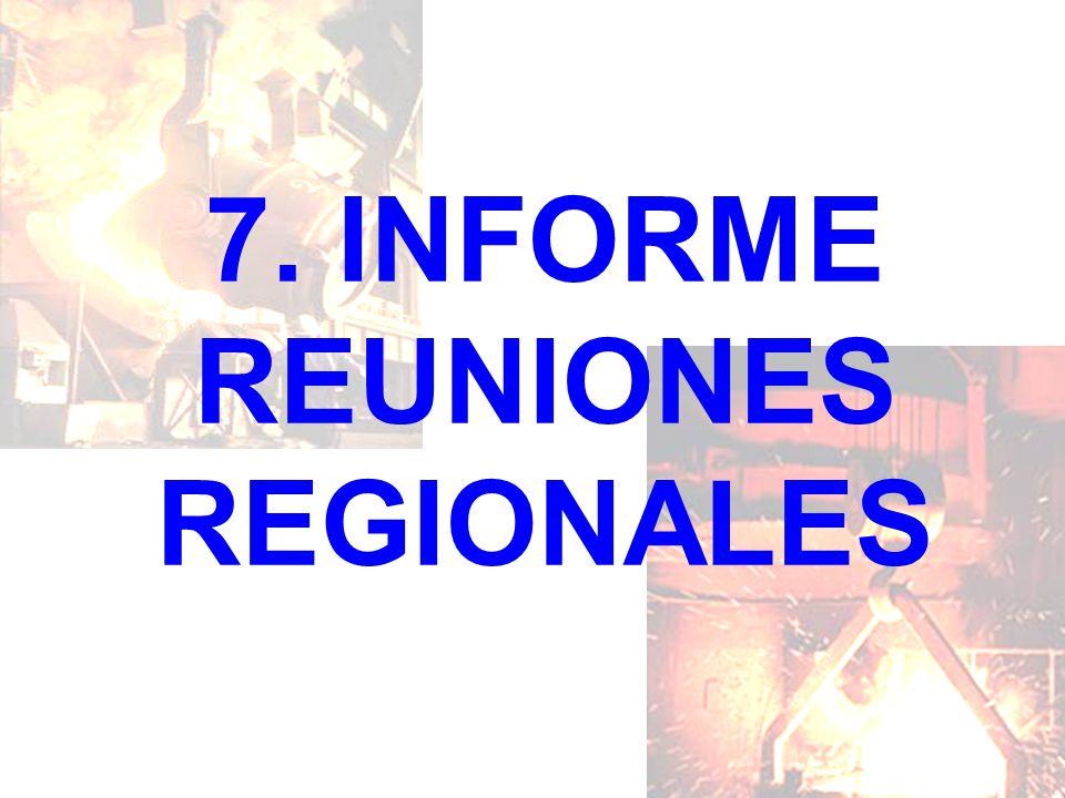 7. INFORME REUNIONES REGIONALES