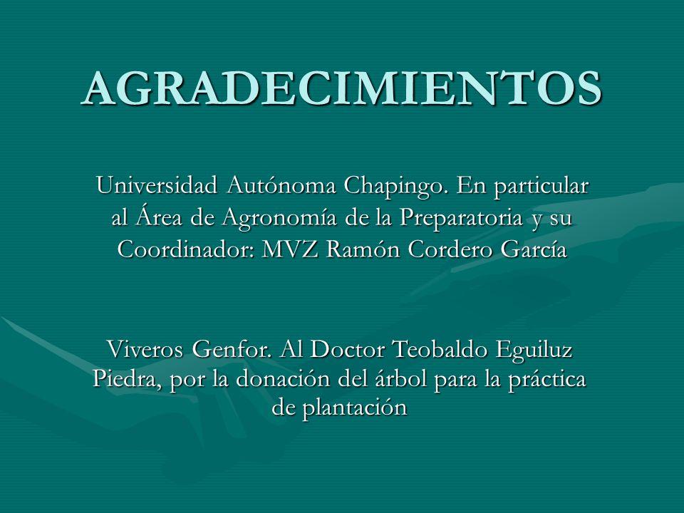 AGRADECIMIENTOS Universidad Autónoma Chapingo. En particular al Área de Agronomía de la Preparatoria y su Coordinador: MVZ Ramón Cordero García.