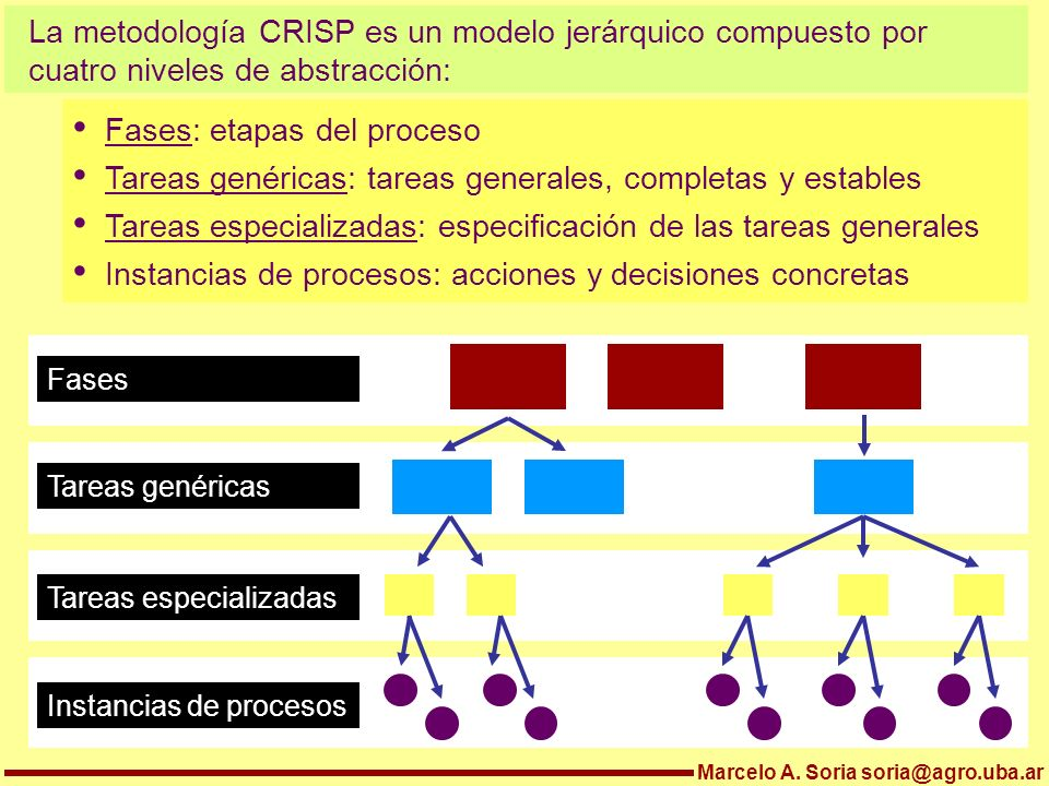 Fases: etapas del proceso