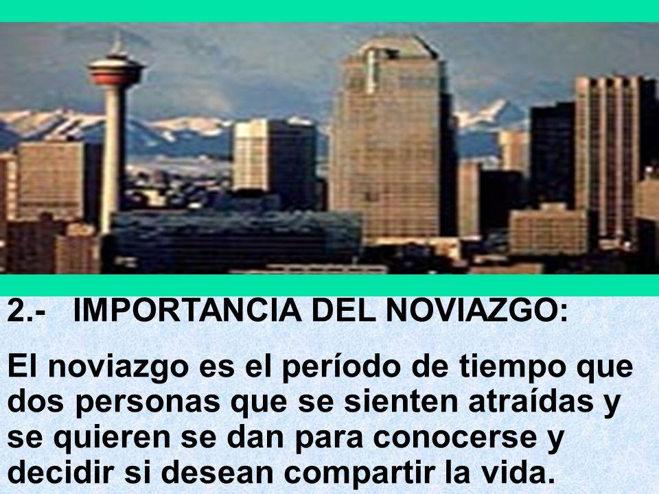 2.- IMPORTANCIA DEL NOVIAZGO: