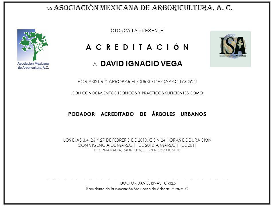 A C R E D I T A C I Ó N A: DAVID IGNACIO VEGA